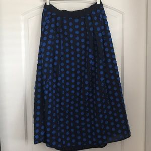 NEW with tags JCREW navy embroidered skirt